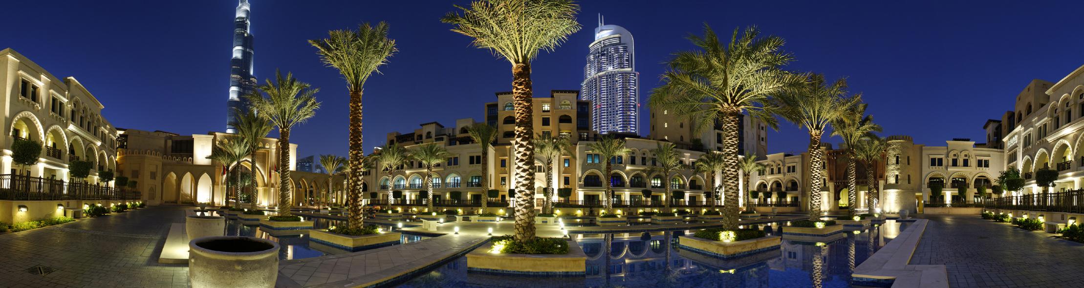 Dubai Palmen